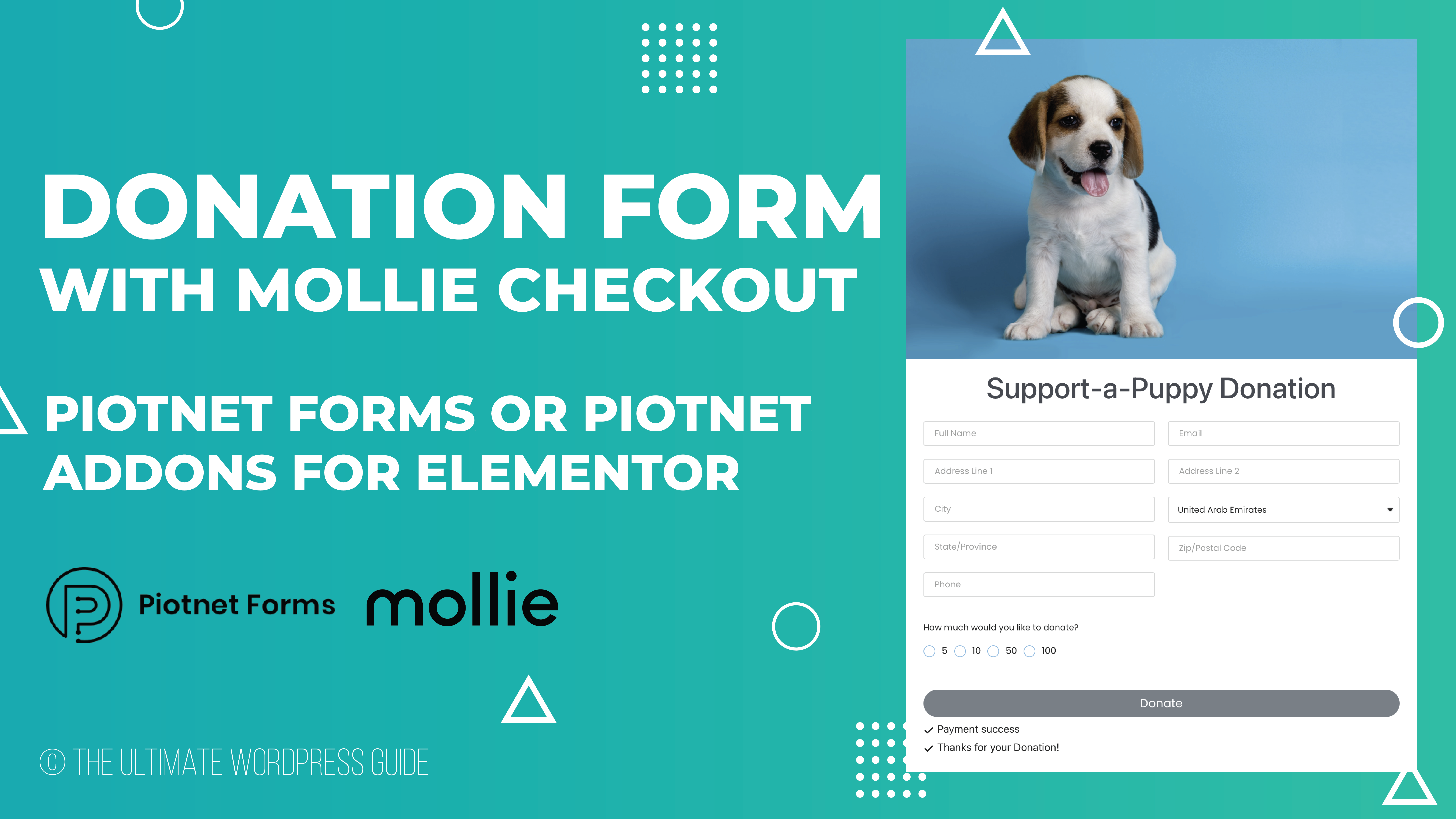 How to collect Mollie Payment with Piotnet Forms